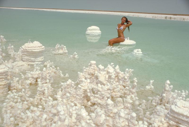 sea shore salt company Virginia oyster growers american shellfish company - eastern shore (bayside) & (seaside) regions 1 & 3 p o box 138 cheriton, va 23316 contact: joe peirson.